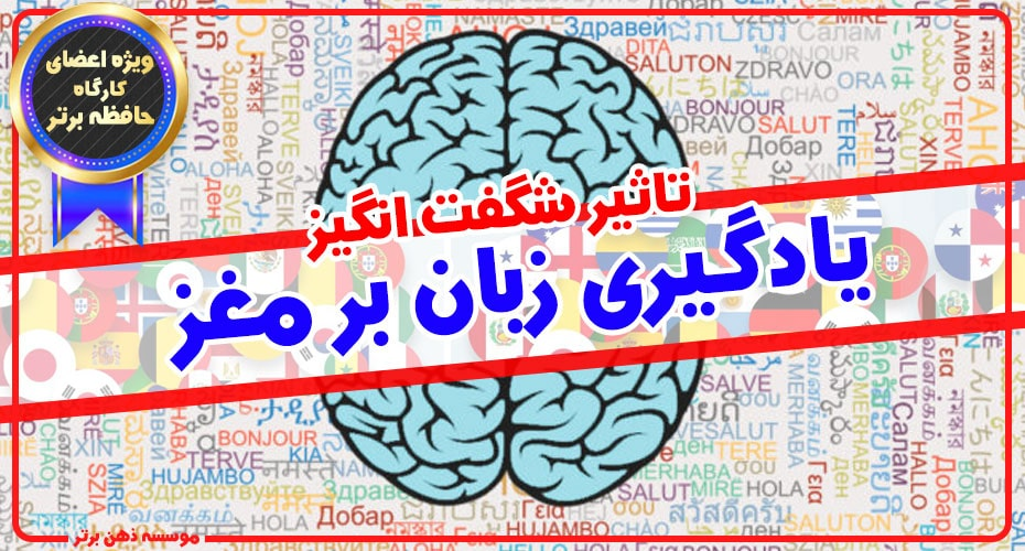 تاثیر شگفت انگیز یادگیری زبان بر مغز